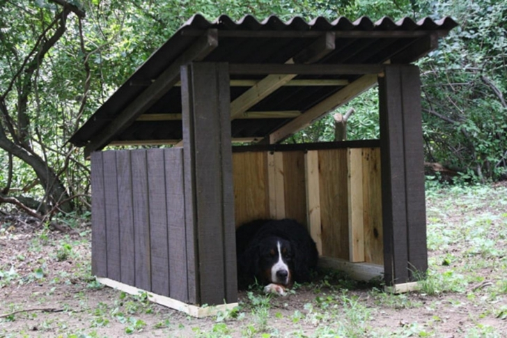 Marvelous How To Build A Modern Dog House | How-Tos | Diy Dog House Designs Simple Image