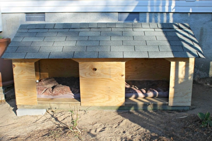 Remarkable Diy Large Dog House Plans And Simple Dog House Ideas - Cleancrew.ca Dog House Designs Simple Picture